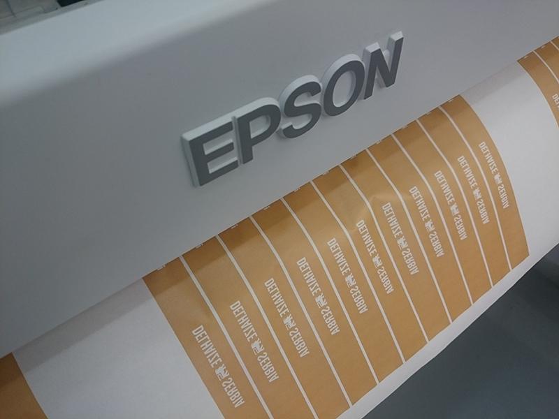 epson6000